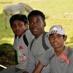 Au Zoo de Beauval: Kevin, Grace et Abimanyou (drôles de zèbres !)